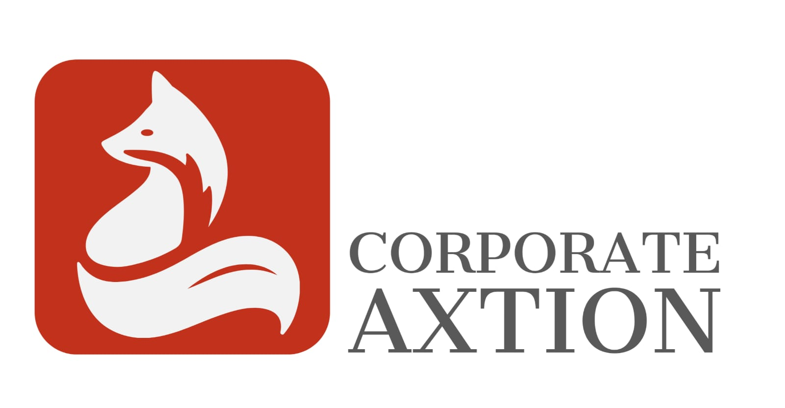 Corporate Axtion International